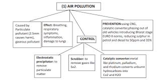 Cbse Class 12 Biology Environmental Issues Flow Chart