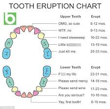 Parents Share A Hilarious Baby Teething Chart Teeth