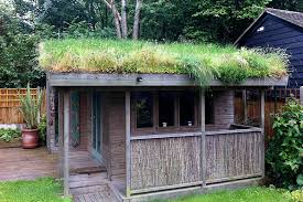 green roof training in london