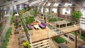 green eco office building interiors natural light. Another Notable Mention Is Except, A Green Cooperative Based In The  Netherlands With Foliage-filled Sanctuary. The Office, An Abandoned Shipyard, Eco Office Building Interiors Natural Light O