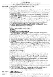 Sample Resume For Marketing Manager Marketing Manager India Resume Samples Velvet Jobs 23