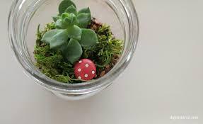 diy mason jar terrarium with succulents