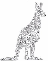 Small Picture Collection Kangaroo Colouring Pictures Pictures Images coloring kids