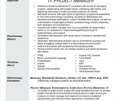 Sample Of Resume Pdf It Project Manager Resume Template Sample