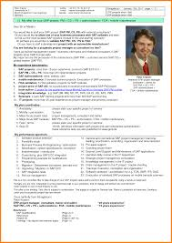 it project manager cv ledger paper erp project manager cv peter kramer mobile 49 0 172 94 64 0