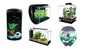 betta fish tank decor fish tank decorations fish tanks and plus 1 gallon bowl and plus betta fish tank decor divided tank diy