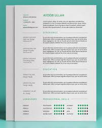 Sample Cv Template Cv Template Keynote 1 Cv Template Resume Templates Resume Cv