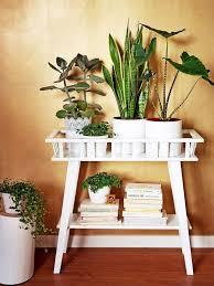 Kitchen decor  Lantliv IKEA Plant Stand - indoor Plants