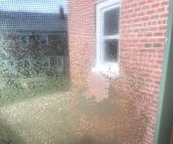 a reader wants to get rid of the screen shaped imprint on this window reader photo reader photo