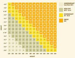 Check Bmi Chart Body Mass Index Bmi Calculator Palm Beach Weight Loss Doctor