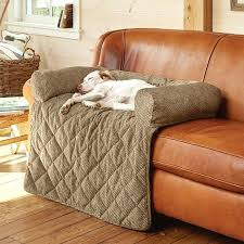 pets furniture. Noble Pet Covers For Sofa Design Enchanting Pets With Dogs In The House Dog Furniture Protectors Couch Australia
