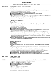Resume Sample For Document Processor Resume Examples