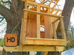 10 DIY Tree Projects That Will Make You Say WoW  Forts Kids How To Build A Treehouse For Adults