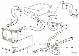 Bmw M42 Engine Diagram BMW E30 M20 Engine