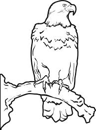 Small Picture Free Printable Bald Eagle Coloring Page for Kids