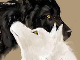 black wolf and white wolf love. Contemporary White Black Wolf White By WindSeekerjpg On And Love L