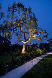 moonlight outdoor lighting. in all of what we call nature the moon stands apart it is full that ignites our passion for light as designers moonlight outdoor lighting