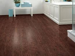 bathroom with dark hardwood floors