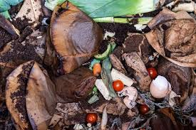 Brewing a good cup of coffee is biodegradable and compostable. Can You Compost Coffee Filters Grower Today