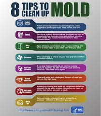 health risks and tips to remove mold