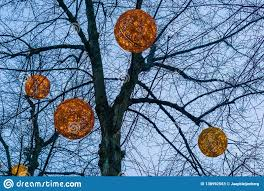 Round Outdoor Hanging Lights Round Globes Filled With Lights Hanging In A Tree Beautiful