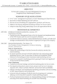 Resume for an Executive Account Manager - Susan Ireland Resumes