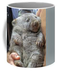 Choose from a variety of designs. Wombat Holding Australia Coffee Mug For Sale By Benny Marty