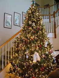 TreeFarmPhotosArtificial Blue Spruce Christmas Tree