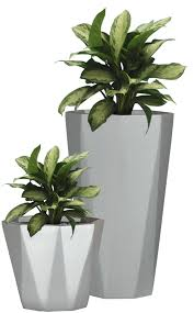 office flower pots. Office Flower Pots. Pots O A