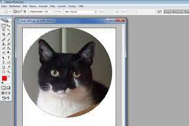 Photoshop, cS6 les 4: Het uitsnijden van