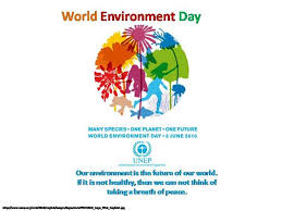world environment day presentation authorstream