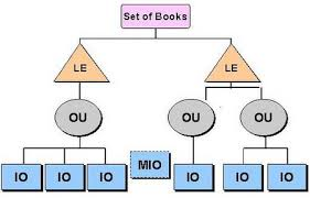 Sample Organization Structure Habibs Oracle World