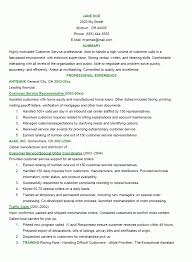 Resume Professionally Designed Customer Service Templates Good