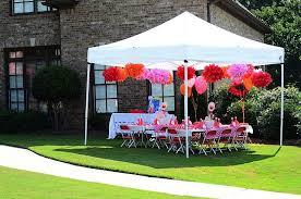 elmo birthday party tent decorations