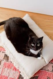 this neutral and cute diy cat bed that cost less than 8 to make