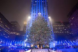 the tree stands lit after the lighting ceremony for the 84th annual rockefeller center