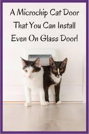 Cat Door In Window - Best Microchip Cat Flap Door Review ⋆ My Kitty ...