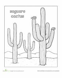 Small Picture Color the Saguaro Cactus Worksheets and Cacti