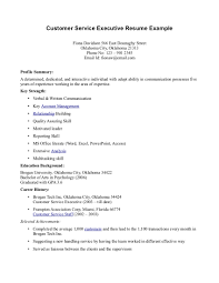 Executive Resume resume format for customer service executive Tolgjcmanagementco 92