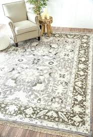 Neutral Color Area Rugs For Decor Impressive