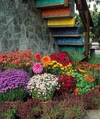Img 0177 225x300 Container Garden Ideas Funky Perennial 001 Sample Container Garden Ideas Uk