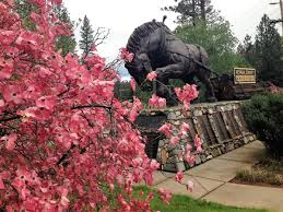 gentle giant monument with dogwoods 2016