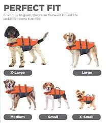 Ezydog Life Jacket Size Chart Best Dog Life Jacket Our Top 7 For 2019 Reviewed