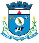 imagem de Papagaios Minas Gerais n-18
