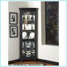 Corner Kitchen Curio Cabinet Curio Cabinets Corner All About Cabinet