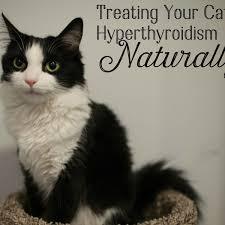 natural treatment for hyperthyroidism