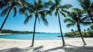 beach에 대한 이미지 검색결과