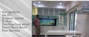 home home aquarium
