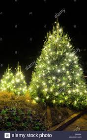 Outside Trees With Lights Christmas Tree Lights Outside Stock Photos Christmas Tree