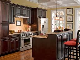 Plain Kitchens With Brown Cabinets Photo Impressive Design
